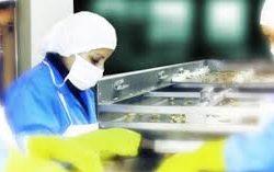 خدمات المصانع الإنتاجية العاملة